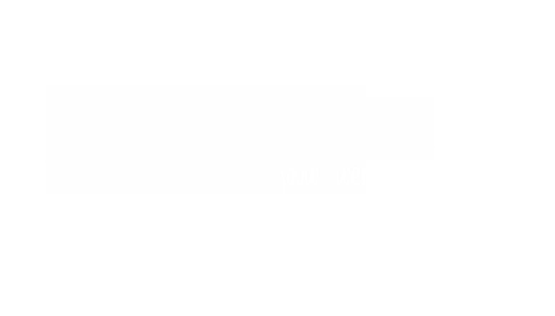 Sanne Fotografie Logo